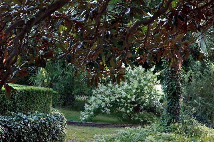Giardino A Pinerolo 8
